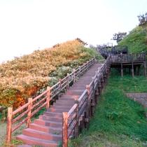 *みさき台公園/階段を登って行くと、さらに見晴らしの良い高台へと続いています。