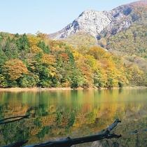 十二湖紅葉