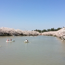 弘前城ボート体験