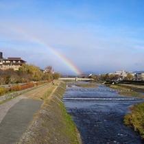 雨上がりの鴨川