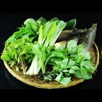 春は山菜や筍など旬のものをふんだんに使用したお食事内容となっております。