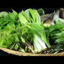 下ごしらえをしっかりした山菜を味わうことができます。