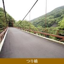 早川を渡る金乃竹塔ノ澤専用のつり橋