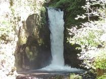 観光 竜返しの滝2