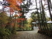 施設 エントランス秋景色10