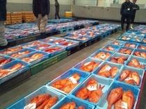 沼津魚市場