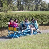 【変わり自転車】2人乗り、4人乗りなどみんなで楽しめます。
