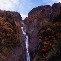 称名滝紅葉