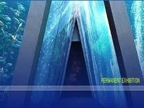 アクアマリンふくしま☆総水量2050トン潮目を表現した三角トンネルは世界でここだけ!