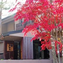 【秋】美しい紅葉がゲストをお出迎え。館内も秋の装いに。季節ごとのディスプレイもまた楽しみのひとつ