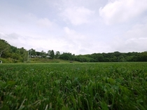 天然芝を完備!!夏はスポーツ合宿に最適!