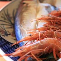 新鮮な魚介類を豪快に!!高知ならではの食材を満喫してください。(一例)