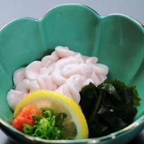 【白子】その時期、旬のキトキト魚料理でおもてなし