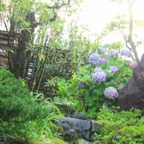 当館の庭。四季を感じられます