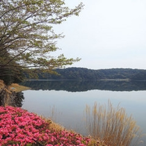 御池湖畔の四季の色を肌で感じながら散策。。