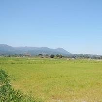 高原町の景色