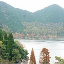 秋の風物詩 色付く藺牟田池
