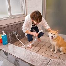 ワンちゃんも入れるお風呂は、もちろん源泉かけ流し♪