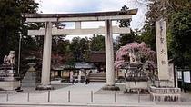 【多賀大社】日本屈指のパワースポット、新年の初詣は「お多賀さん」へ」