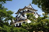 【国宝彦根城】白亜三層の天守は今もなお気高い雄姿を誇り、姫路、松本、犬山とならび国宝四城のひとつです