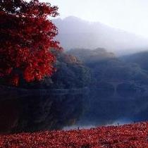 【碓氷湖】秋には紅葉が美しい。