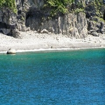 藍ヶ江の海
