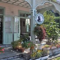 【三角西港】 緑美しいカフェ