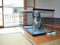 【客室】ワンちゃんと一緒にお泊りいただける和室です。