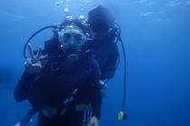 【オプションメニュー】体験ダイビング