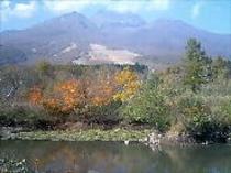 秋のいもり池(車で5分)