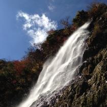 天滝 県下随一の名瀑。弘法大師がこの地を聖地として崇められたとして伝えられています