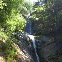 落差もあり、神秘さも漂う、猿尾滝です