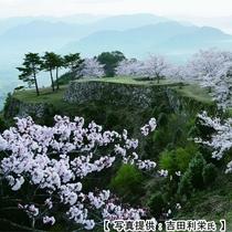 桜咲く頃の竹田城跡の一例
