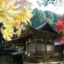 養父(やぶ)神社 県下でも有数の紅葉の名所。但馬(たじま)5社のひとつに数えられる神社です