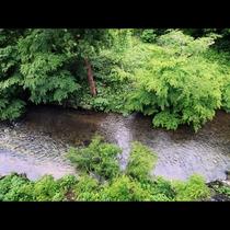 窓から見下ろす川のせせらぎ
