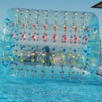 【ビッグローラー】水の上を走る新感覚!