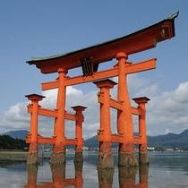■厳島神社 大鳥居