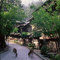 ■新館外景と鹿