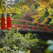 ■もみじ橋の紅葉