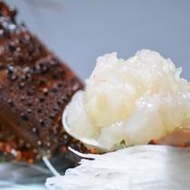 【お料理一例】プリップリ!伊勢海老のお造り(5月中旬~9月中旬は禁漁の為、提供なし)