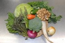 地元の健康的なお野菜をたっぷり使ったお食事を用意しています