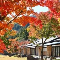 外観「秋」