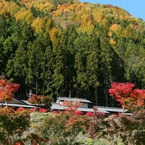 全景「秋」