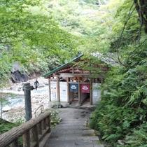 *真湯[混浴]/川のせせらぎが心地よい、石段を降りた先にございます。