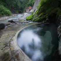 *疝気の湯[混浴]/渓流沿いに湧き出る湯。自然との一体感を味わえます!