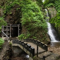 *周辺散策/「洞窟のむし風呂」蛇の湯の滝隣にございます。※現在入浴不可