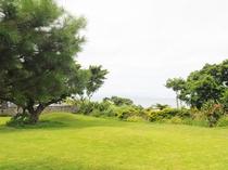【中庭】庭は約150坪あります
