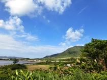 【庭からの眺望】石垣島の自然を感じられる風景