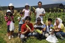 野菜収穫体験