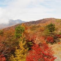 *袈裟丸山/紅葉シーズンはしゃくなげやツツジの色鮮やかさが山を覆い、弘法大師や信仰にまつわる伝説も